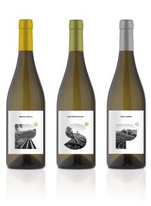 Ribolla Gialla, Sauvignon Blanc, Pinot Grigio - I monovitigni bianchi